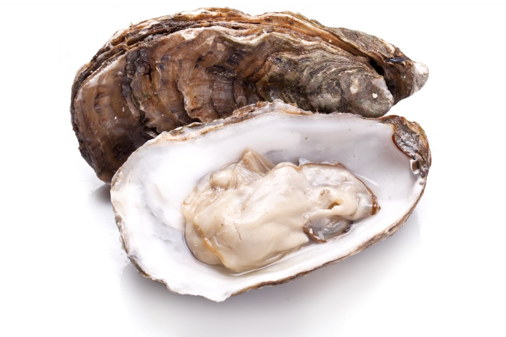 venta-de-ostras